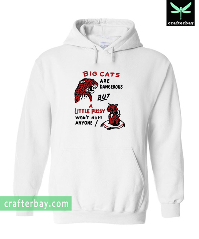 Big cats are dangerous but little pussy won't hurt anyone Hoodie